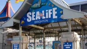 Wycieczka dzieci i mlodziezy w Anglii, Brighton