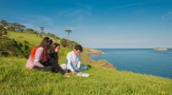 Odkrywanie pięknej przyrody wokół Torquay podczas zajęć z angielskiego